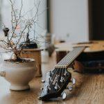 gitarre-blumentopf-ama-pola